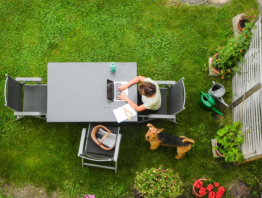 Aerial view of owner sitting on patio furniture, out in her backyard, and browsing on laptop with pet dog staring up.